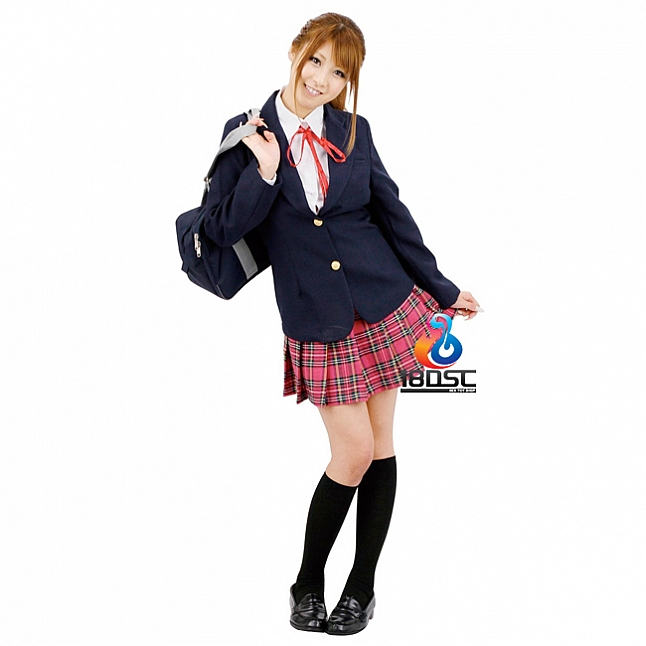 A-One Costume Love Schoolgirl After Class Costume