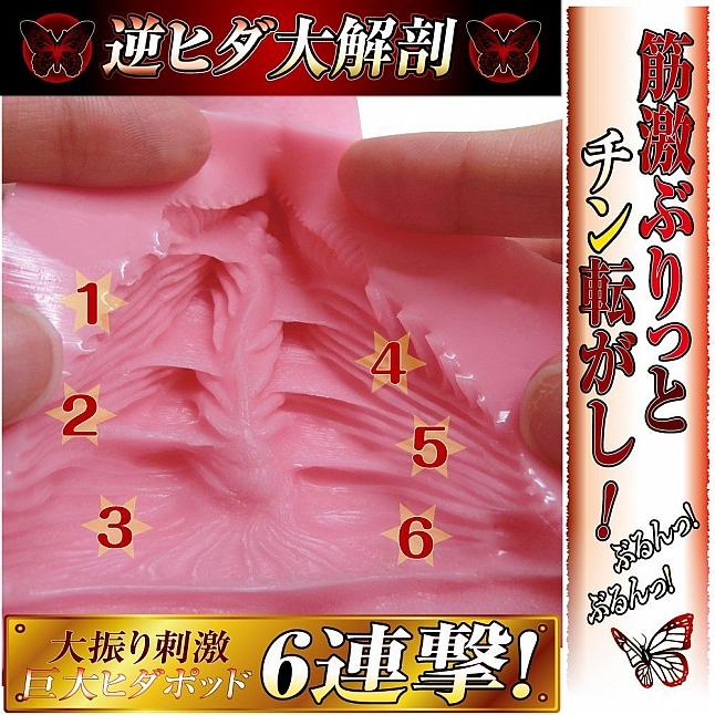 Ride Japan - Gyaku Hida Vagina Jyu